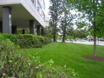 Potomac Plaza Front Lawn